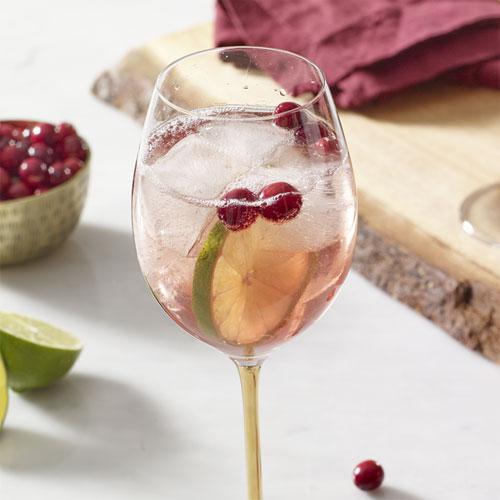 Festive Wine Spritzer